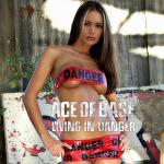 Cover Artwork Remix of Ace Of Base Living In Danger