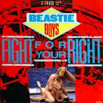 Cover Artwork Remix of Beastie Boys Fight For Yourright