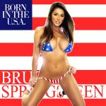 Original Cover Artwork of Bruce Springsteen Born In The Usa Remix