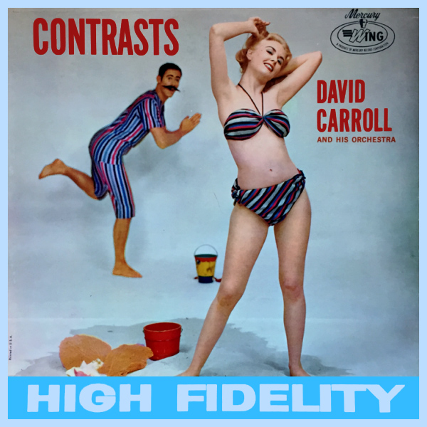 david carroll contrasts 1