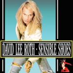 Original Cover Artwork of David Lee Roth Sensible Shoes