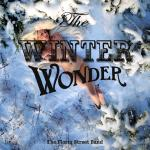 Cover Artwork Remix of Florin Street Band Winter Wonder