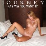Cover Artwork Remix of Journey Any Way You Want It