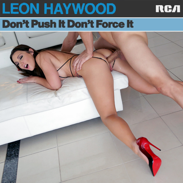 Cover Artwork Remix of Leon Haywood Dont Push It Dont Force It