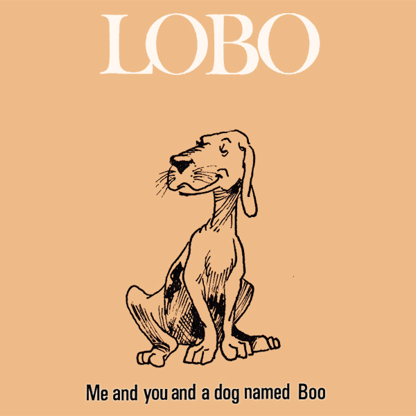 Original Cover Artwork of Lobo Me And You And A Dog Named Boo