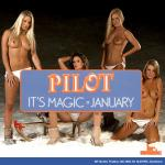 Cover Artwork Remix of Pilot January