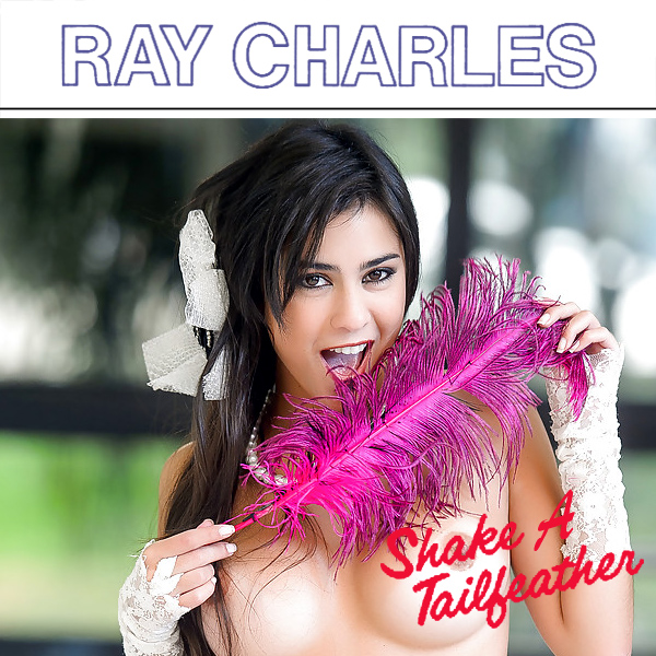 Cover Artwork Remix of Ray Charles Shake A Tailfeather