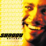 Original Cover Artwork of Shaggy Hotshot
