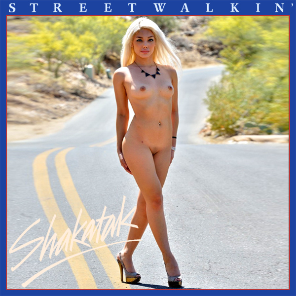 Cover Artwork Remix of Shakatak Streetwalkin