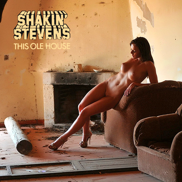 shakin stevens this ole house remix