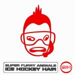 Original Cover Artwork of Super Furry Animals Ice Hockey Hair