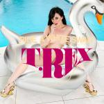 Cover Artwork Remix of T Rex Ride A White Swan