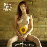 Cover Artwork Remix of Tears For Fears Sowing The Seeds Of Love