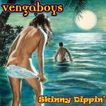 Cover Artwork Remix of Vengaboys Skinny Dippin