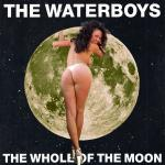 Cover Artwork Remix of Waterboys Whole Moon