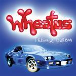 Original Cover Artwork of Wheatus Teenage Dirtbag