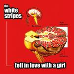 Original Cover Artwork of White Stripes Fell In Love With A Girl