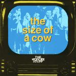 Original Cover Artwork of Wonder Stuff Size Of A Cow
